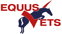 Bytes Computers Client - Equus Vets